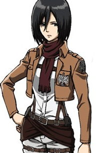 Attack%20on%20Titan%20Mikasa%20Ackerman%20cosplay%20wig%204.jpg